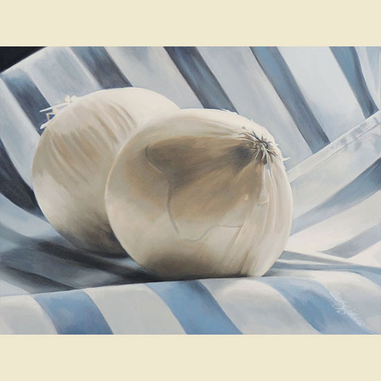STRIPED ONIONS  |  24 X 30  |  SOLD